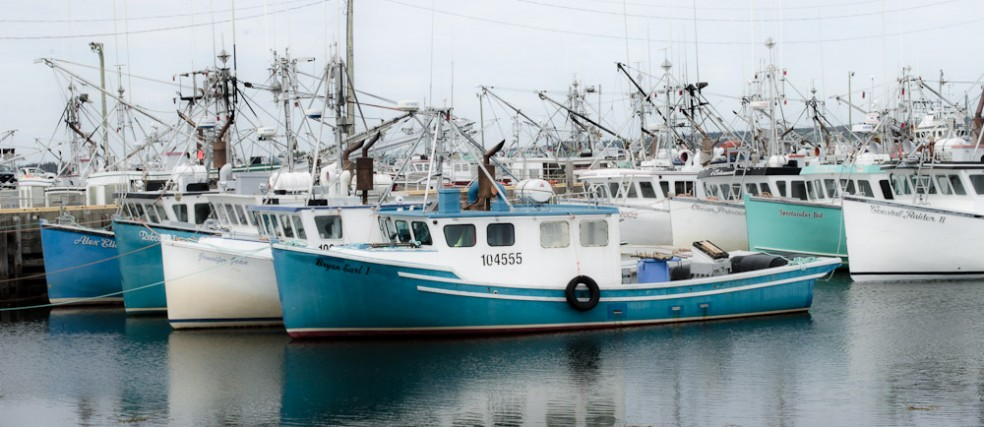 Acadian fishing boats