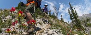 Heiko's Trail / Fernie, BC